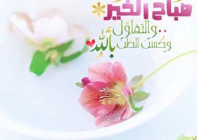 صور صباح الخير جديدة عالم الصور Good Morning Cards Beautiful Morning Messages Good Night Wallpaper