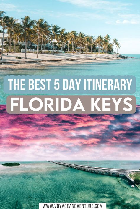 The Florida Keys are a must-visit destination, full of natural beautiful, rich history, and amazing food. Here's how to road trip through the Keys! Road Trip Florida, Road Trip Usa, Florida Vacation, Florida Travel, Florida Keys, Vacation Spots, Cruise Vacation, Disney Cruise, Vacation Destinations