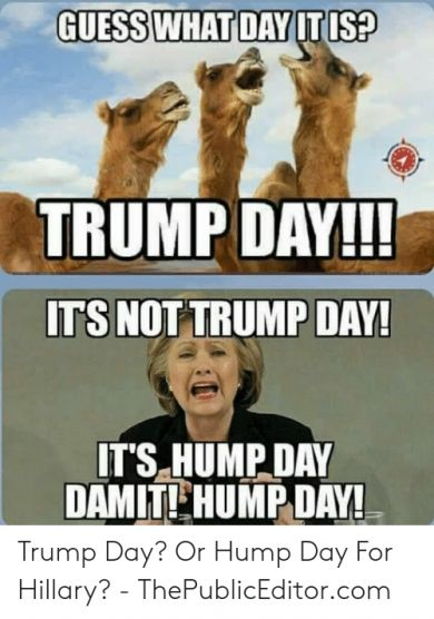 10 Best Guess What Day It Is Trump Day Meme Picture 2019 Meme Pictures Memes Relatable