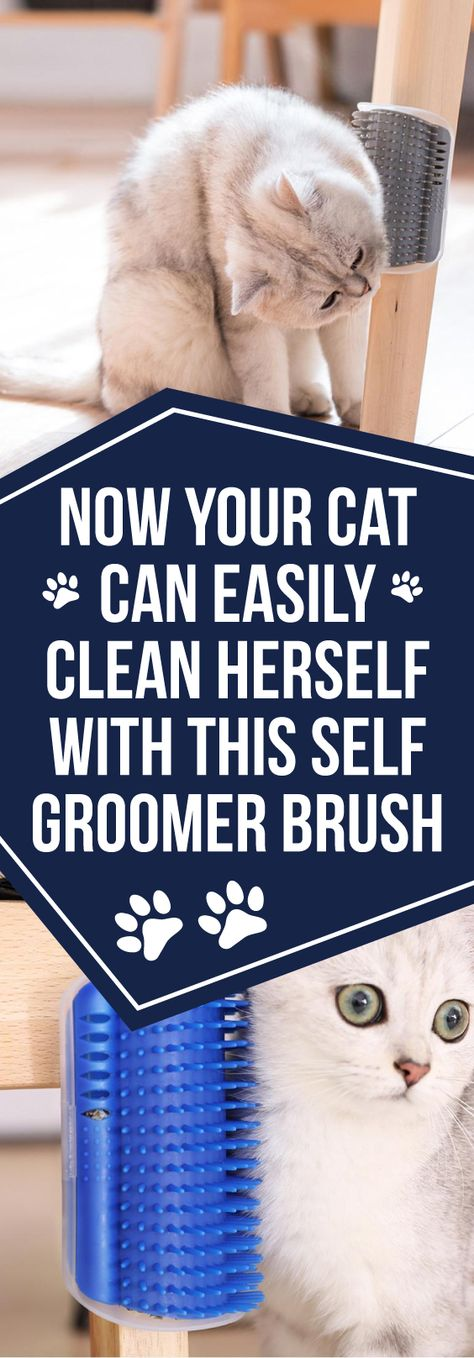 The Cat Self Groomer Brush provides easy-access rubbing pleasure for cats, while the bristles simultaneously remove loose and shedding hair. The brush can be snapped in and out of its frame for simple maintenance.