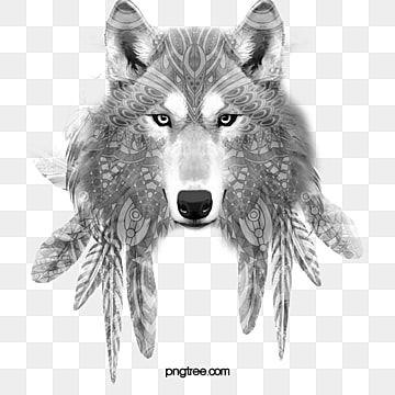 Wolf Wolf Clipart Bosquejo Lobo Png Y Psd Para Descargar Gratis Pngtree Ilustracion Vectorial Ojos Acuarela Perro Rojo