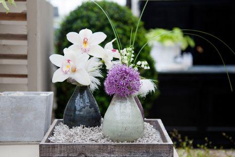 Inspiratie   LZ Orchidee