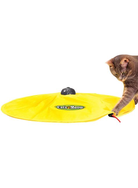 Cat's Meow™ at http://www.AmeriMark.com. Just press the button and watch as your cat tries to catch the peekaboo wand that mimics a scurrying mouse. #catsmeow #cattoy #chasemouse #amerimark #asotv #asseenontv
