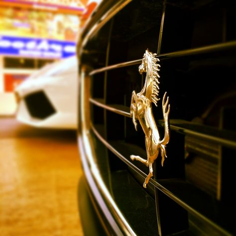 Buy Brand New Pre Owned Luxury Certified Cars In India With Images New Luxury Cars Amazing Cars Automotive Photography