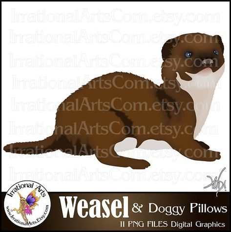 Weasel Set 1 With 11 Png Digital Clipart Graphics 300dpi Doggy Pillow Instant Download Digital Clip Art Clip Art Digital Graphics