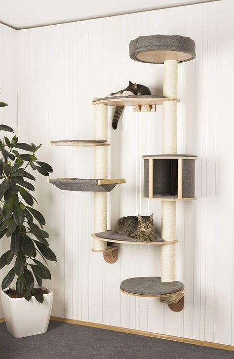 Find varied and practical ideas for the cat climbing wall! Katze Find varied and practical ideas for the cat climbing wall! Katze The post Find varied and practical ideas for the cat climbing wall! Katze appeared first on Katzen. Animal Room, Animal Decor, Cat Climbing Wall, Cat Climbing Shelves, Diy Cat Tower, Homemade Cat Tower, Homemade Dog, Pet Furniture, Barbie Furniture
