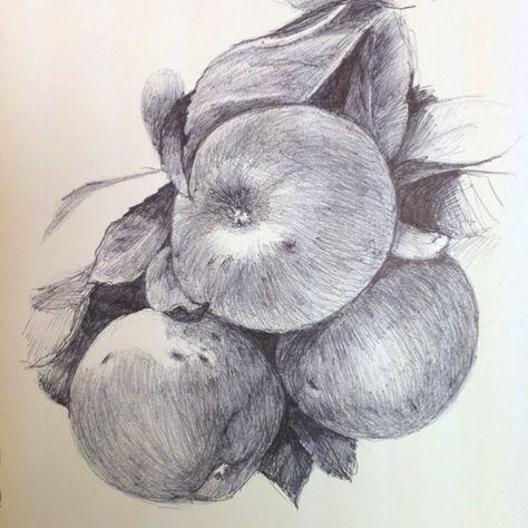 Tonight ballpoint pen sketch. I used a Robert Bateman piece as ref.