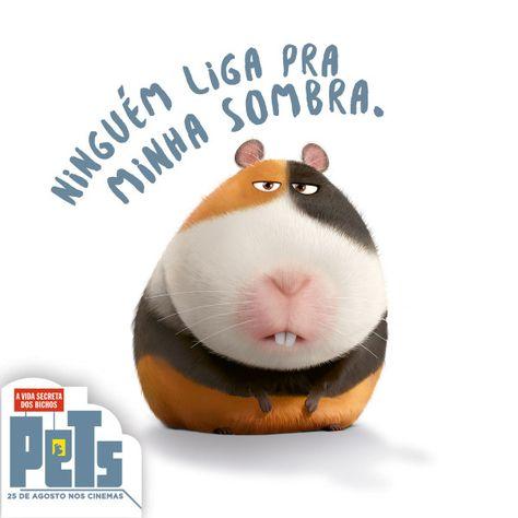 Site Oficial Do Filme Pets A Vida Secreta Dos Bichos Assista Ao Trailer Aqui 25 De Agosto De 2016 Nos Cinemas Secret Life Of Pets Secret Life Pets