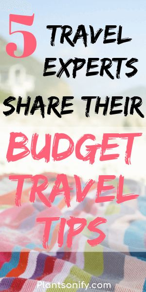 Five travel experts share their best tips for traveling on a budget and also with a family.  They also share their favorite places to travel to that are budget friendly. #budgettravel #traveltips #familytravel #plantsonify