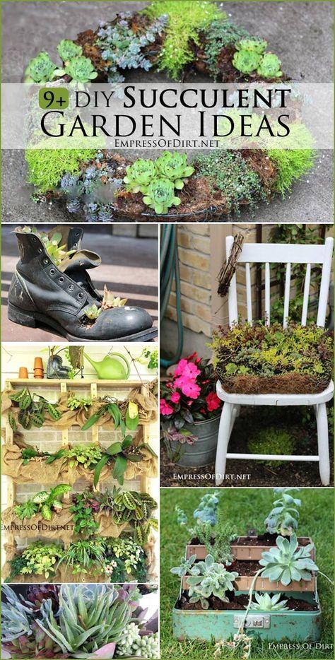 9 DIY Succulent Garden Ideas at http://empressofdirt.net