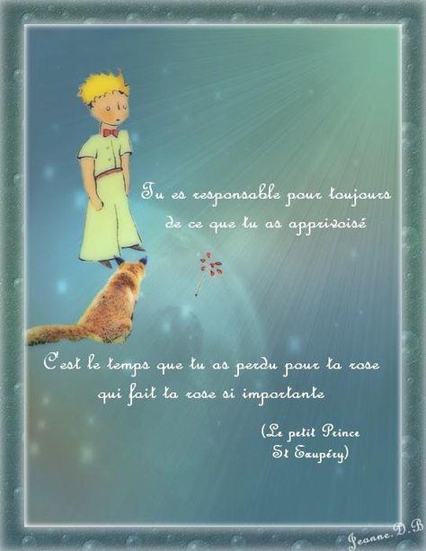 Citations Le Petit Prince : citations, petit, prince, Petit, Prince, Ideas, Little, Prince,, Quotes,, French, Quotes