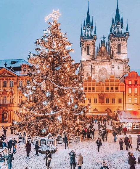 Prague Czech Republic - Architecture and Historic Places - Buildings - Amazing Travel Photography and Sightseeing Destinations Christmas Tree Themes, Christmas Mood, Christmas Lights, Merry Christmas, Holiday Decorations, Christmas Decor, White Christmas Snow, Christmas Things, Christmas Christmas