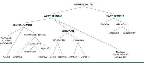 Image result for semitic language evolution