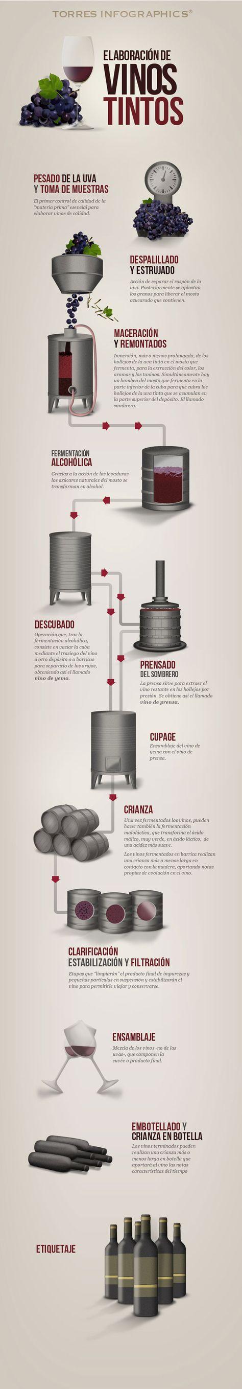 Una infografía muy interesante de la elaboración del vino por el Club Torres