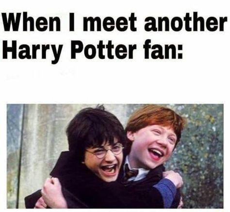 When I meet another Harry Potter fan: – popular memes on the site ifunny.co