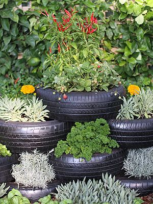 This is the tire herb garden my sister has been telling me about ...