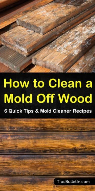6 Quick Ways To Clean Mold Off Wood Cleaning Mold Cleaning Wood