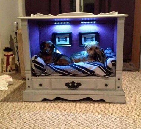 Pin By Gayle Sherman On Cuties Designer Dog Beds Diy Dog Bed
