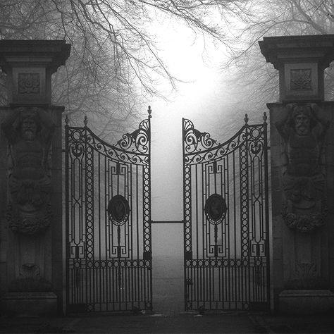 Gates misty Misty Gates