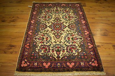 Songhor Handmade 4x5 Persian Rugs For Kitchen Home Dyed Wool Rug Durable Quality