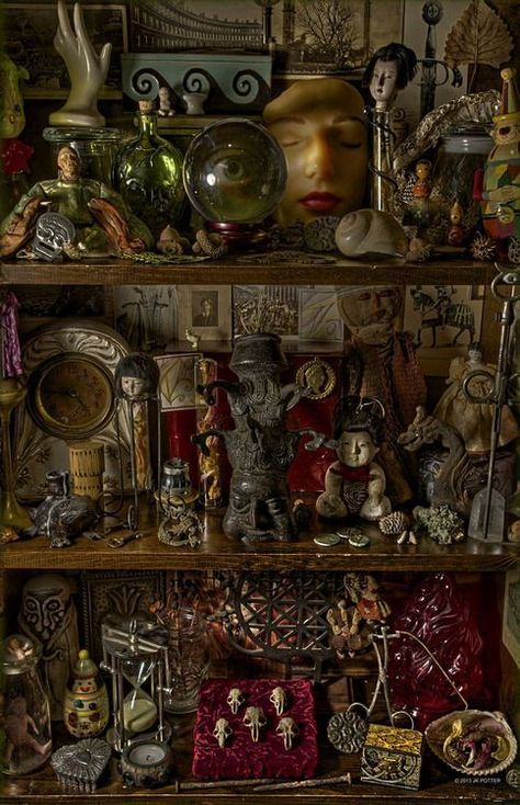 Curiosity shelves and oddities Curiosity Cabinet, Curiosity Shop, Cabinet Of Curiosities, Witch Aesthetic, Gothic House, Assemblage Art, Memento Mori, Witchcraft, Magick