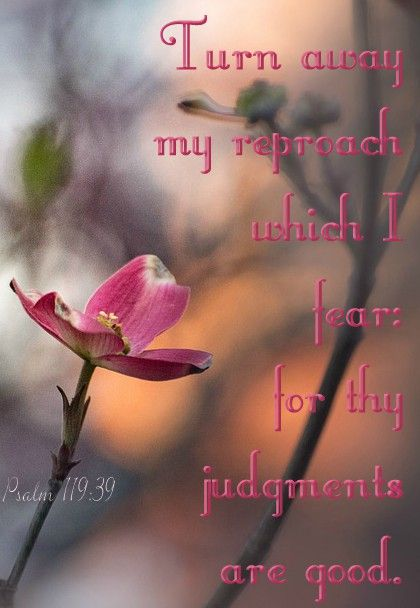 Psalm 119:39 (KJV) Turn away my reproach which I fear: for thy ...