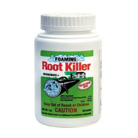 Patio Garden Drain Cleaner Tree Roots Septic System