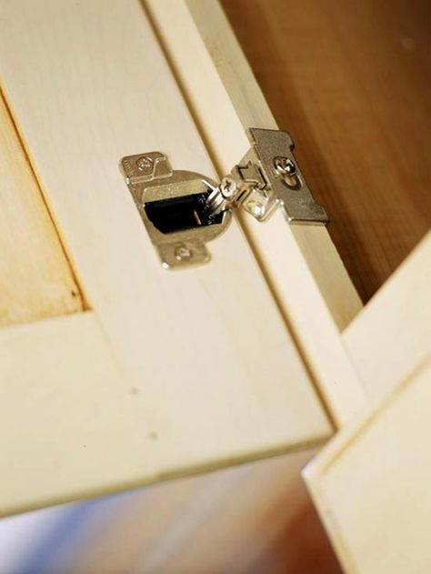 face frame cabinetry -- they do make hidden hinges that will work on ...