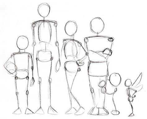 Human Anatomy Fundamentals: Advanced Body Proportions