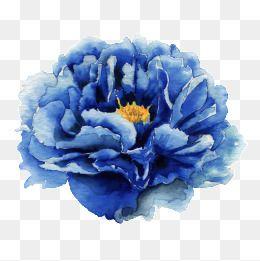 2020 的 Blue Flowers 主题