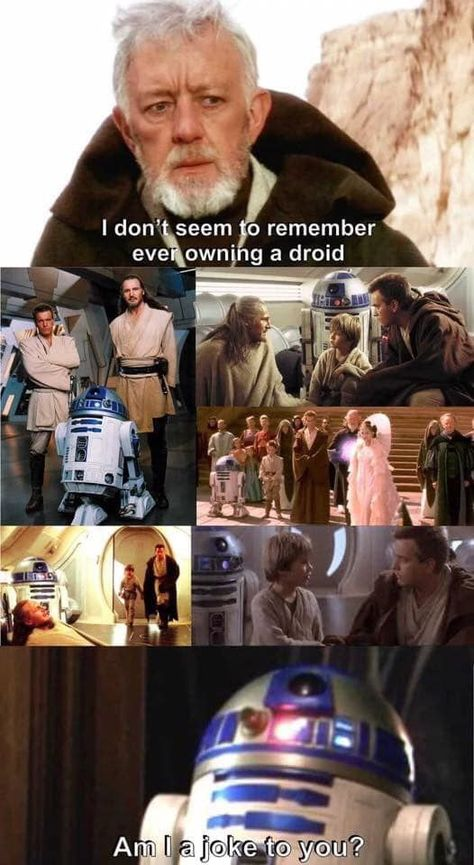 Obi Wan dementia - - More memes, funny videos and pics on Star Wars Film, Rey Star Wars, Star Wars Darth Vader, Star Wars Meme, Funny Star Wars Quotes, Funny Star Wars Pictures, Star Wars Logos, Star Wars Poster, Star Wars Party