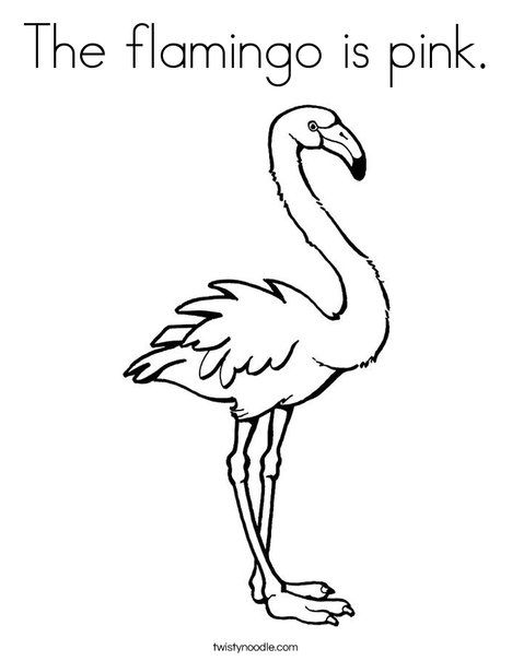 The Flamingo Is Pink Coloring Page Tracing Twisty Noodle In