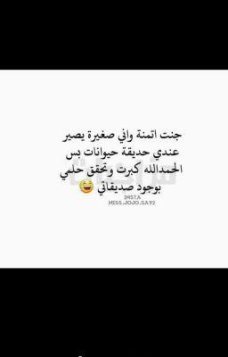 تحشيش عراقي وبس Cards Against Humanity Story Arabic Calligraphy