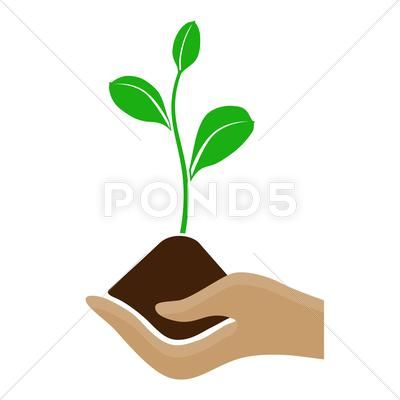 Stylized Hand Holding A Pile Of Dirt And Growing Plant Stock Illustration Ad Holding Pile Stylized Hand Hand Illustration Plant Illustration Stylized