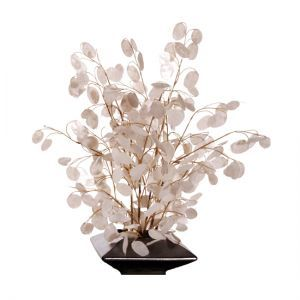 seems like these would make good centerpieces or wishing trees...Lunaria