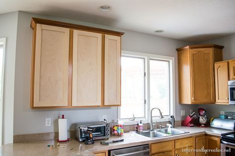 Hottest Pics Replacing Kitchen Cabinet Doors Concepts Dreaming