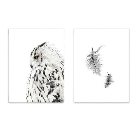 Nordic Elegant Snow Owl and Feather Canvas Print Set - Comp 2 / 28X36CM No Frame