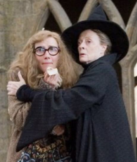 Pin By Sarah S Fandom On Harry Potter In 2020 Emma Thompson Maggie Smith Harry Potter Movies
