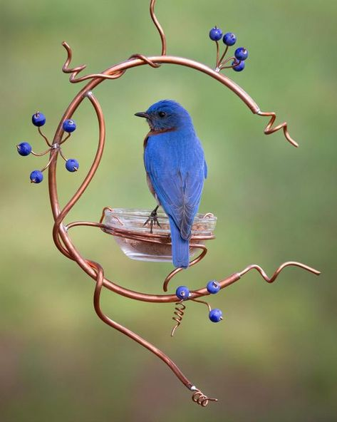 This bluebird feeder is designed like a small copper wreath with blue berries.  A glass bowl for mealworms fits securely in a copper coil.  The bowl can be removed for filling and cleaning.  This feeder is 14 inches long and 10 inches wide at its largest points.  Each feeder may vary  slightly as each is handmade.  THE BLUEBIRD PHOTOS ARE OF BIRDS USING A SIMILAR STYLE FEEDER I MADE.  This feeder is a complete circle. Bird House Feeder, Diy Bird Feeder, Humming Bird Feeders, Garden Bird Feeders, Homemade Bird Houses, Homemade Bird Feeders, Garden Crafts, Garden Projects, Garden Ideas