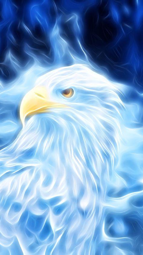 Bird Of Prey Eagle Digital Art Wallpaper Eagle Painting Eagle Wallpaper Spirit Animal Art