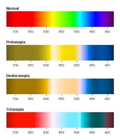 If Red Green Color Blindness Is The Most Prevalent One In Twelve Men Are Color Blind Should You Rely Solely On Color To Get Your Color Vision Color Blinds,Elegant Outdoor Christmas Decorations Ideas