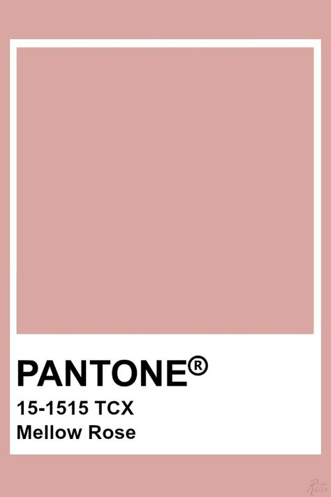 Pantone Mellow Rose