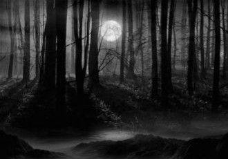 Pin By Ian Sedwell On Molly Scary Woods Spooky Pictures Haunted Forest