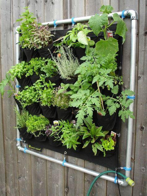 Como Hacer Un Jardin Vertical Casero Paso A Paso Con Imagenes Huertos Verticales Jardines Verticales Jardines Verticales Caseros
