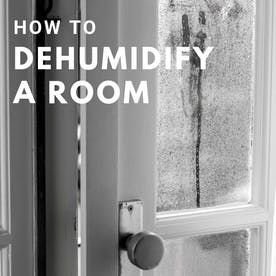 c45adcc9868f9b21c0667b0e93068a66 - How To Get Rid Of Dampness In A Room