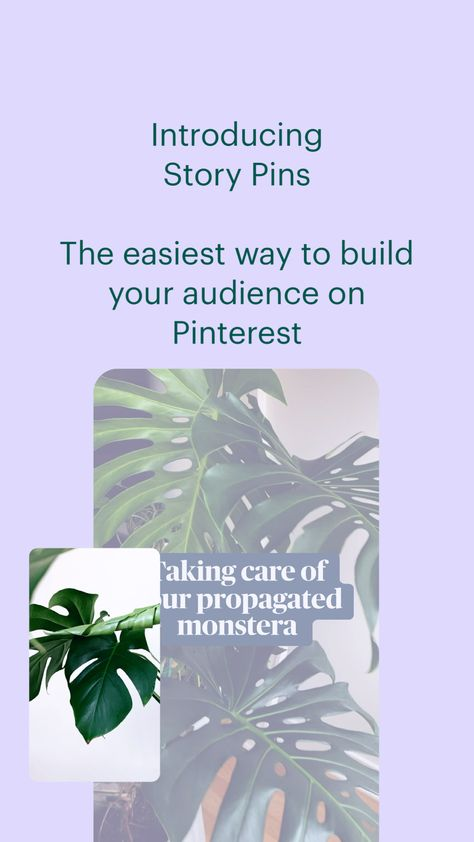 Introducing  Story Pins  The easiest way to build your audience on Pinterest