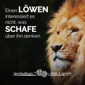 Einen Löwen interessiert es nicht, was Schafe über ihn denken - Motivationssprüche #zitate #sprüche #spruchbilder #deutsch