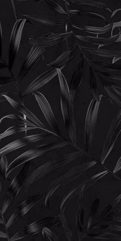 Epingle Par Weller Michele Sur Wallpapers Papeis De Parede Descanso De Tela En 2020 Fond D Ecran Colore Fond D Ecran Telephone Photographie Fond Noir