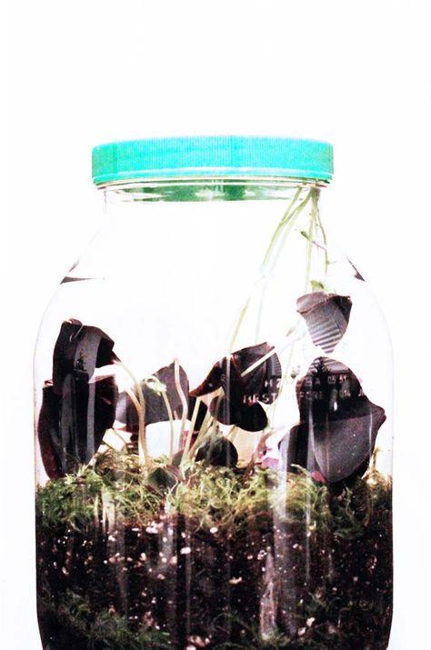 DIY: Jar of Luck! | Poppytalk