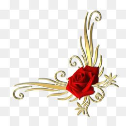 Pin Em Rose Gold